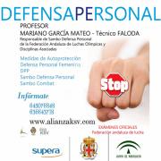 MÓDULO DE DEFENSA PERSONAL, en el Pabellón Rafael Florido
